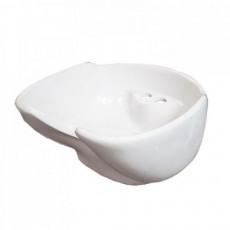 Белая ракушка